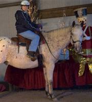 Riding Horse 3